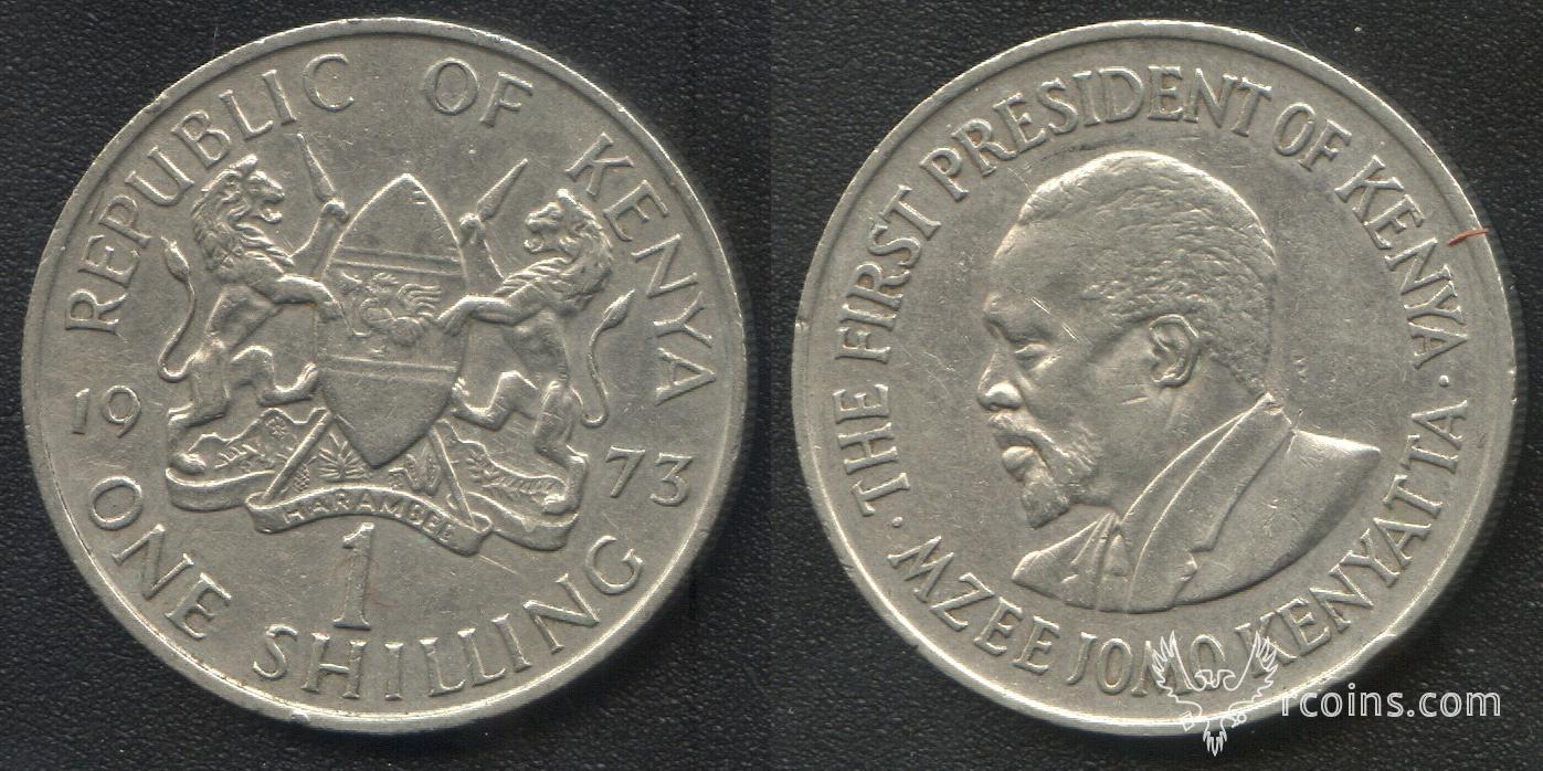 781.JPG